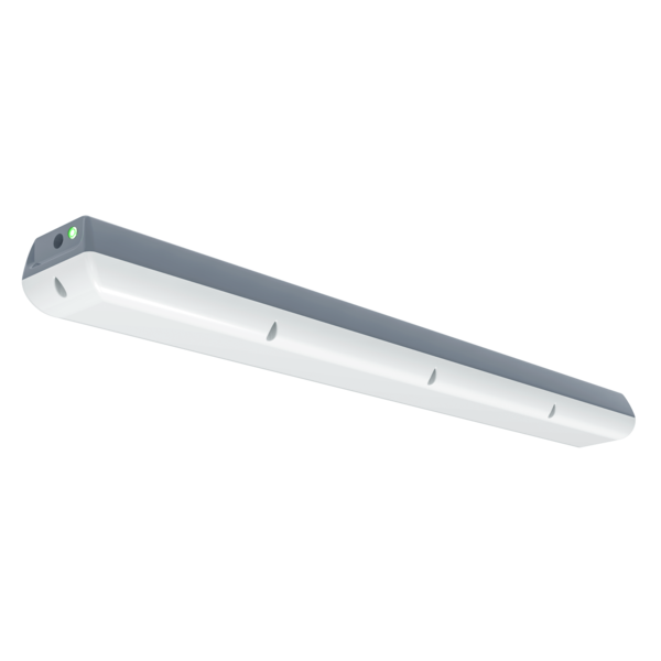 Vandalproof Grandlux emergency LED luminaire